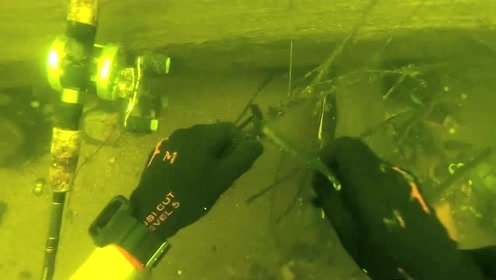 精彩实拍:外国男子潜入海底寻宝,每天都有想不到的惊喜