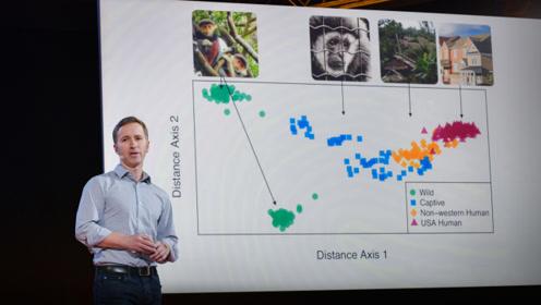 TED:发展中国家和发达国家的人,体内的微生物群很不同