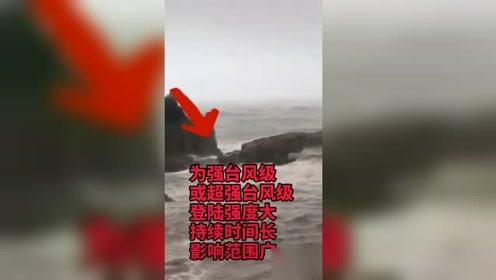 """台风""""利奇马""""在浙江乐清一带沿海登陆"""