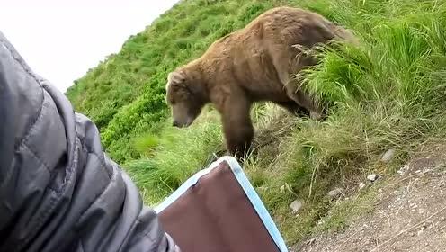 俄罗斯男子去河边钓鱼,突然来了一头棕熊,网友:动一下都不敢