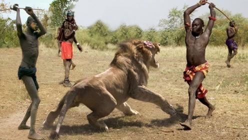 狮子为什么那么害怕非洲土著人?看看他们的成年礼,你就会知道