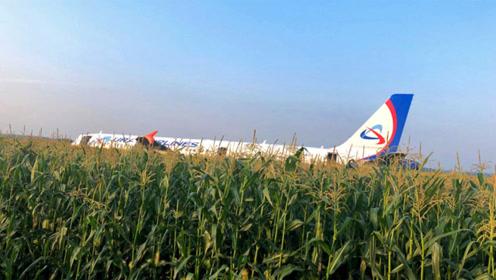 惊险!俄罗斯载234人客机撞鸟 发动机着火后迫降致10人伤