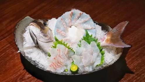 万事皆可成刺身!日本对刺身的疯狂热爱,连巨型皇家鲷鱼也不放过