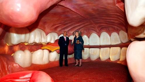 国外仿真人体博物馆,能进去的巨人身体,连人体细胞都可见!