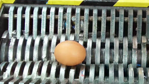 粉碎机终于遇到对手了,竟被一个鸡蛋给难住,网友:画面太魔性!