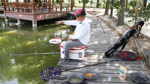 黑坑钓快鱼的全套方法教你,学会后再钓黑坑,前45分钟半护鱼