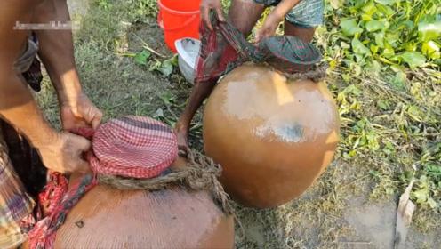 老大爷在河中埋罐子,几天后挖开一倒,里面全是惊喜