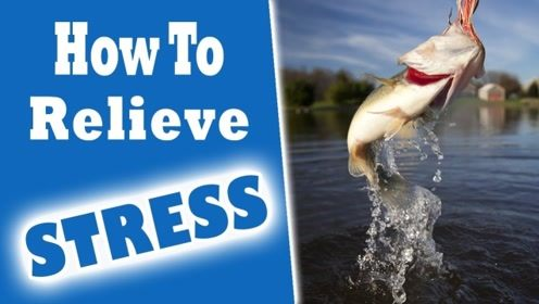 怎样缓解压力与焦虑?