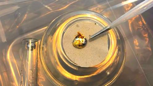 最好不要把黄金和水银放在一起,不然后悔都来不及
