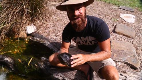 男子有钱任性承包鱼塘,从小梦想是开动物园,现在已经完成一半