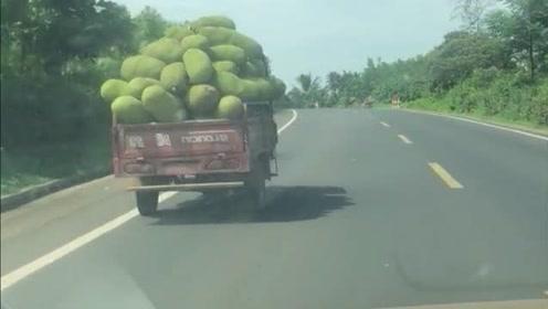 拦车下来,2块钱一斤,拿到市区5块钱一斤!菠萝蜜