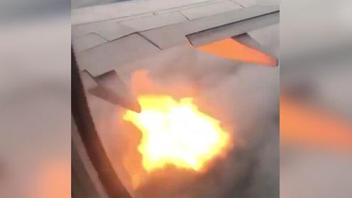 飞行途中被飞鸟撞击 下一秒飞机发动机冒火,乘客纷纷写告别信