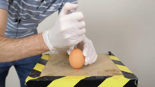 老外将自己的DNA注入鸡蛋,10天过后,鸡蛋的变化出人意料!