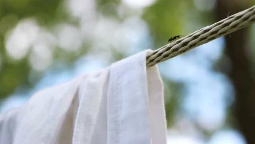 法式美女晒床单,说句夸张的,这是不是住高层的人都想有的生活