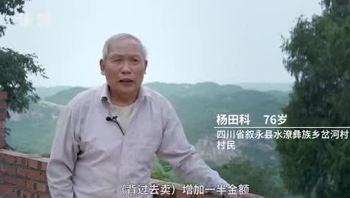 鸡鸣三省大桥:期盼38年的脱贫路通了