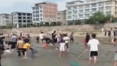 浙江海域台风捡宝 ,鱼群争先游岸上,村民不分昼夜哄抢直呼过瘾