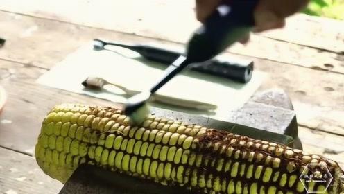 普通牙刷和电动牙刷区别有多大?老外用玉米做实验,看完就明白了