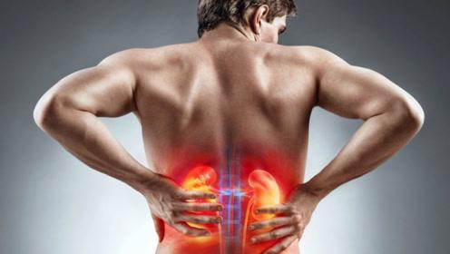 医生提醒:按摩3穴位助你巧补肾,让你越来越强壮