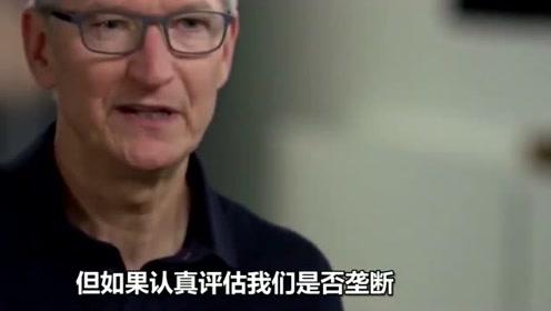 库克:苹果在手机市场不占地位,所以不是垄断企业,占的份额很少