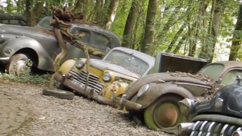 将收藏的豪车丢入小树林,多年风吹雨淋全部报废,却成室外博物馆