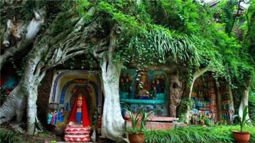 我国神秘千年古寺,一棵古树里藏上千尊佛像,至今是未解之谜