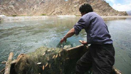 西藏的天然水库拥有8亿多斤鱼,为何却没人敢打捞?看完不敢吃鱼