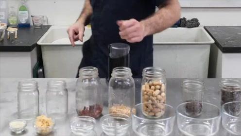 普通豆子能做果冻吗?国外小伙提取原料做果冻豆,网友:有想法