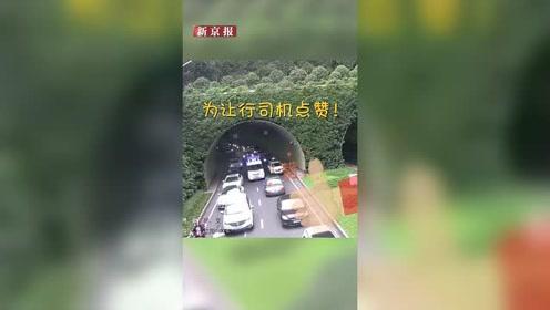 """场面震撼!救护车早高峰被堵隧道 百辆私家车上演""""拉链式""""让道"""