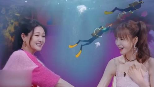 大S自曝与老公潜水趣事 汪小菲微博回应惹笑众人