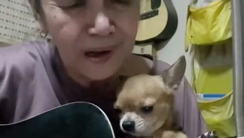 好酷的奶奶呀 晚年有宠物有音乐坚持着自己的热爱