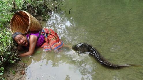农村大姐下田被大鱼偷袭,一顿猛如虎的操作,直接抓来烤着吃