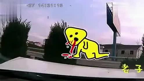 高速上,女司机被后车直撞,车内对话让人笑喷