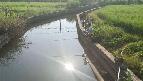 农村大爷在河里,一个小时就钓上那么多鱼,不得不佩服,真厉害