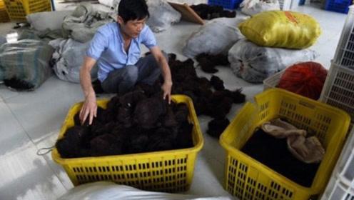 专门收农村女人头发的那些人,到底用头发做什么?看完心凉了