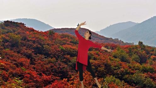 锦瑟舞语-形体舞《映山红》编舞:花与影