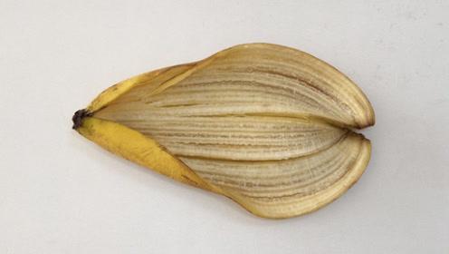 原来香蕉皮比香蕉肉还值钱,这样利用起来,解决了家里的大难题