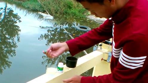 野钓鲫鱼有什么难度?用蘸小米,只要上钩的基本都是鲫鱼