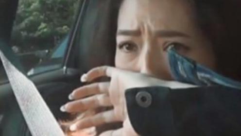 郭碧婷向佐新婚就吵架,一方哭泣一方冷脸,谁还记得向太说的话?