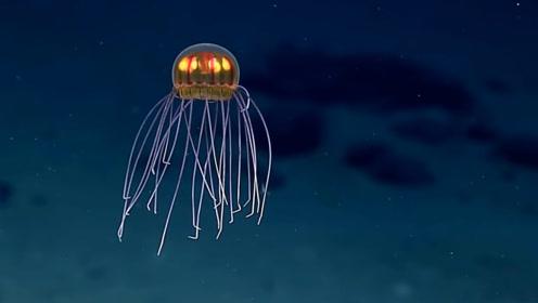 一块砖头扔进马里亚纳海沟,会多久沉到海底?实验结果令人惊讶