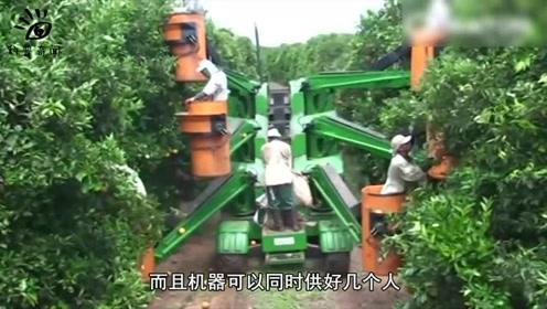 水果运输可以用它,多功能运输机器,实在太先进了