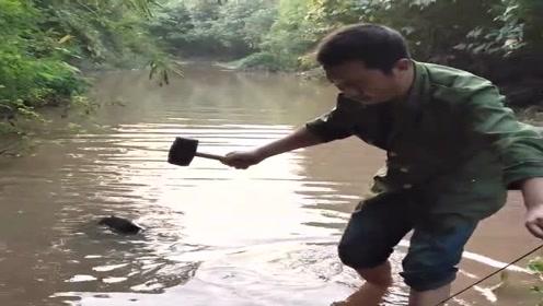 农村小伙在河里遛鱼,结果这货还想跑,小伙一锤子下去就解决了!