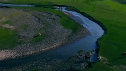 村中惊现巨蟒30米长水缸般粗,到底是真是假?真相竟然是这样!