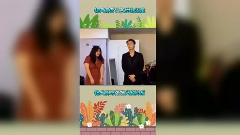 杨天真发声否认要签杨紫和郑爽:没打算新的流量,只想继续度假