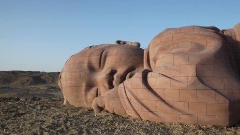 """沙漠中沉睡着""""大地之子"""",他孤零零的趴着,已有两年之久"""