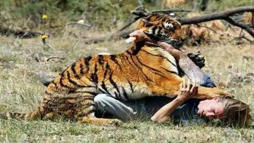 为什么咬过人的老虎一定要被杀死?