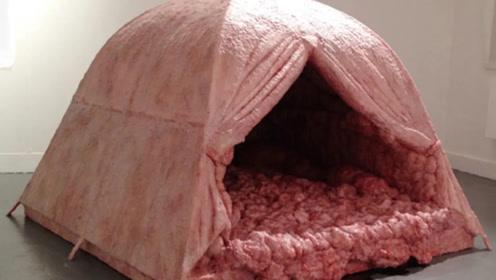 全球最恶心帐篷:睡上一晚就奖励10000元,至今无人成功