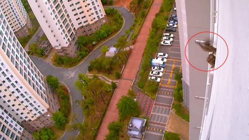 野鸭在20多楼的阳台上安家,孵出一窝鸭宝宝,户主的行为让人暖心
