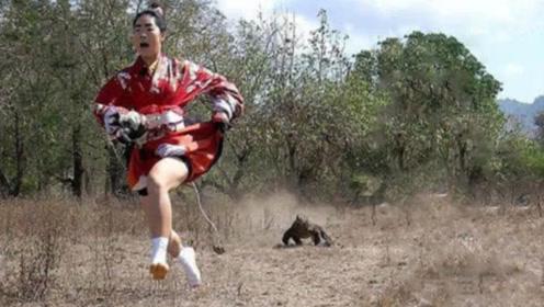 """日本姑娘作死勾引科莫多巨蜥,立马转身就跑,结果""""悲剧""""了!"""