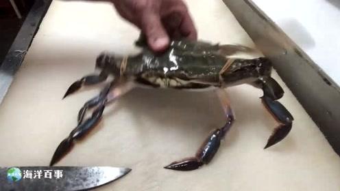市场买来的活梭子蟹,第一次处理,感觉弄砸了!