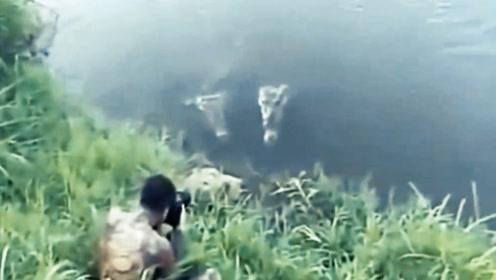 国外作死小伙拍鳄鱼,5秒后惊魂未定,辛亏队友在喂它鱼吃